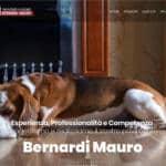 Sito internet Bernardi Mauro